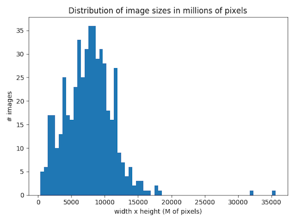 Distribution of Image Sizes