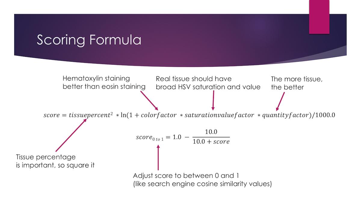 Scoring Formula