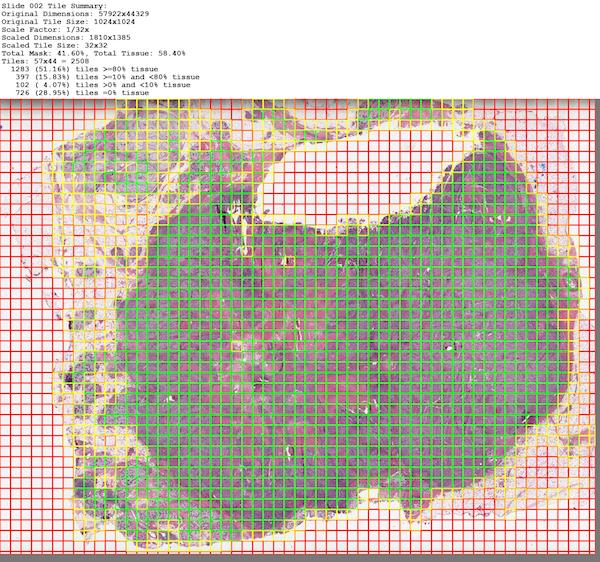 Tissue Heat Map on Original