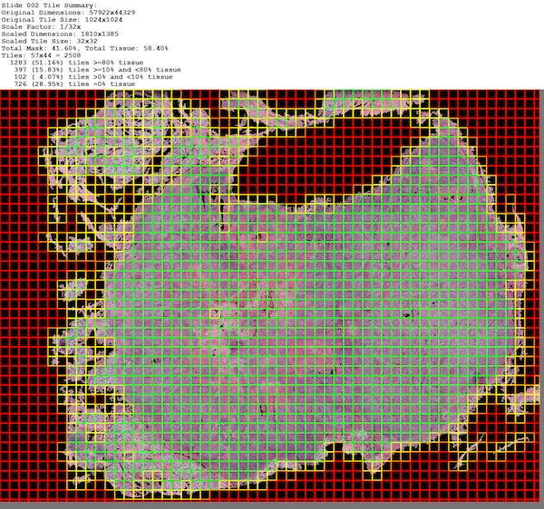 Tissue Heat Map