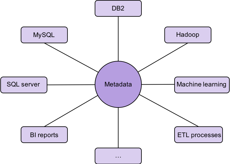 Spider graph showing metadata at the center of the other functions