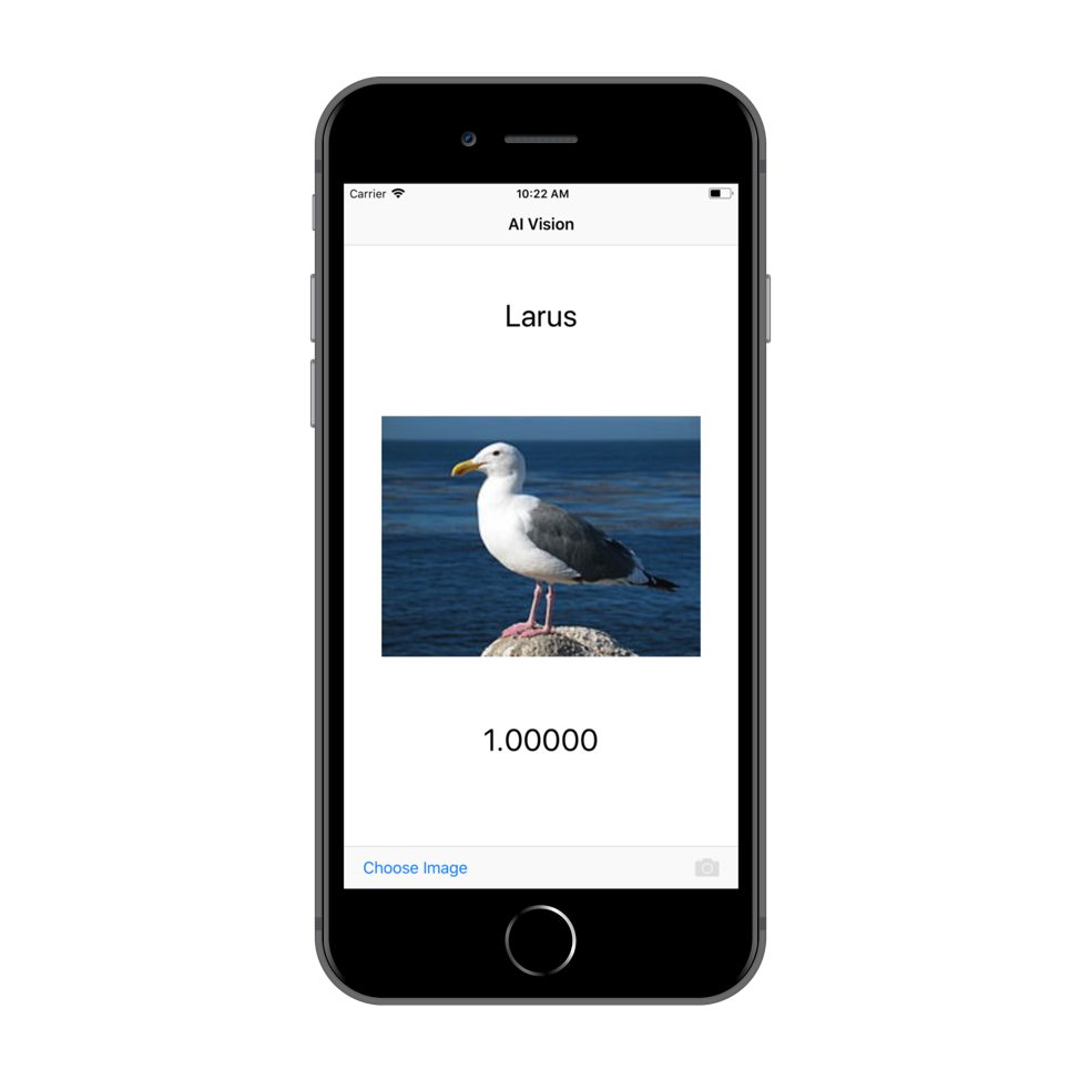 Build and deploy a PowerAI Vision model and use it in an iOS
