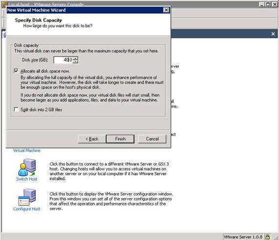 Specifying virtual machine's disk capacity